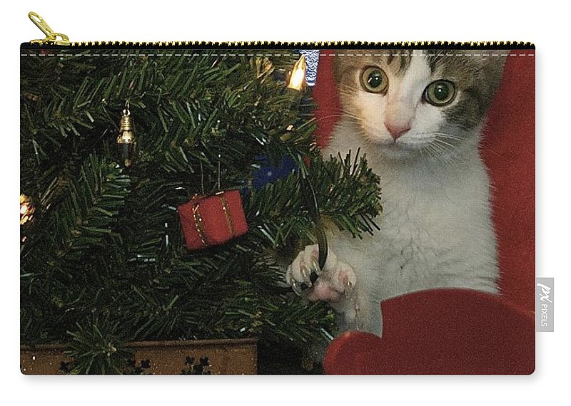 Animals Carry-all Pouch featuring the photograph Kitty Says Happy Holidays by Thomas Woolworth