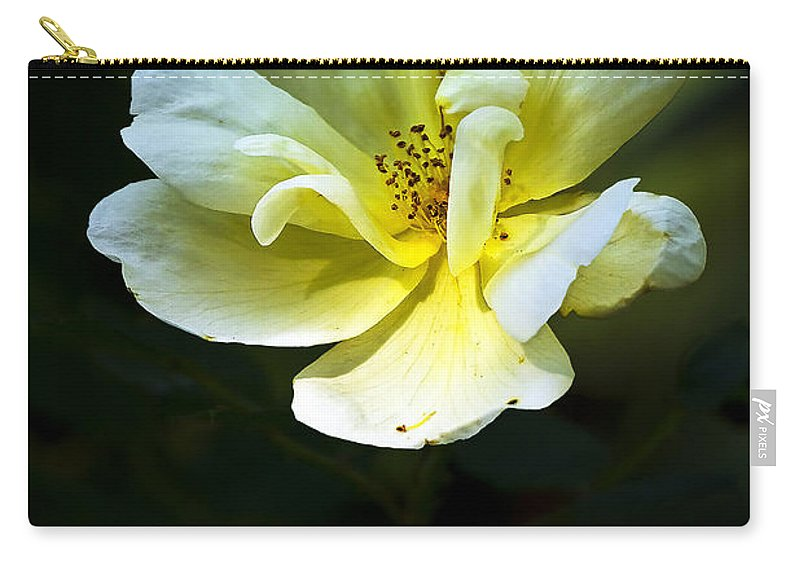 Flower Carry-all Pouch featuring the photograph Knockout by Marcia Colelli