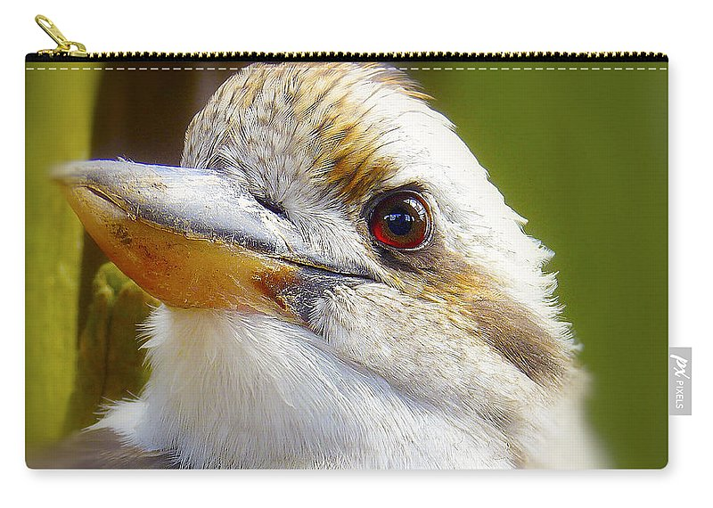 Beak Carry-all Pouch featuring the photograph Kokaburra by Ingrid Smith-Johnsen