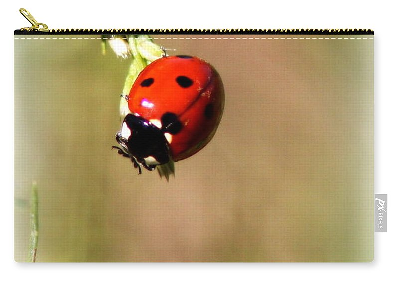 Insect Carry-all Pouch featuring the photograph Lady Bug by Travis Truelove