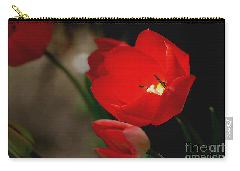 Tulips Carry-all Pouch featuring the photograph Lady In Red by Living Color Photography Lorraine Lynch