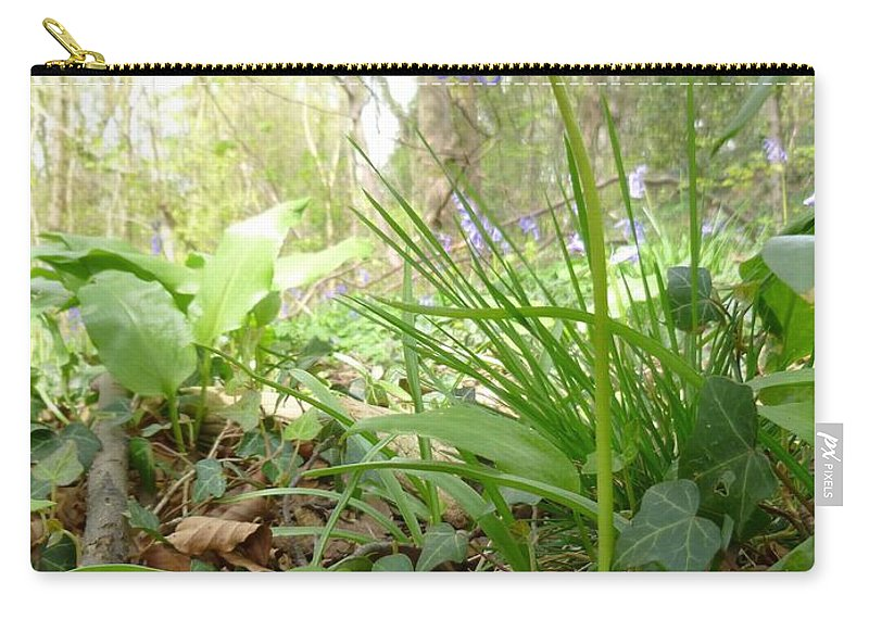 Bluebell Carry-all Pouch featuring the photograph Lady Spencer's Bluebell by Asa Jones