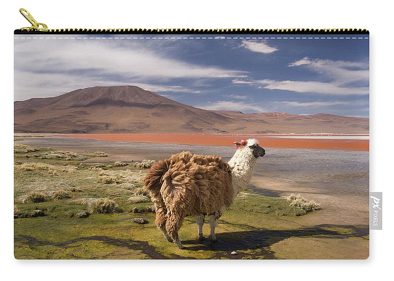 Scenics Carry-all Pouch featuring the photograph Laguna Colorado Lake With Llama by John Elk