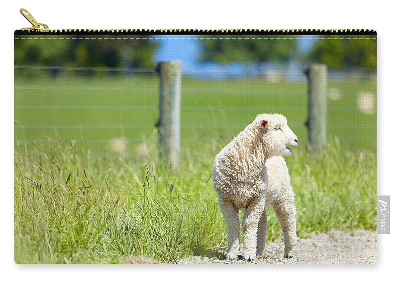 Sheep Carry-all Pouch featuring the photograph Lamb On The Farm by Alexey Stiop