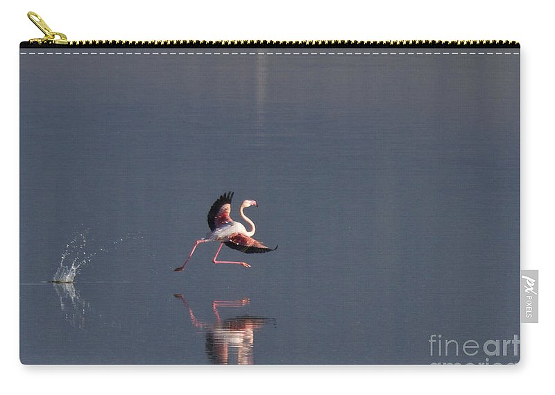Flamingo Carry-all Pouch featuring the photograph Landing Flamingo by Heiko Koehrer-Wagner