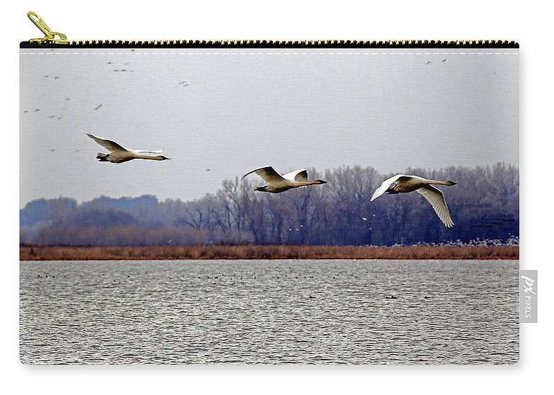 Geese Carry-all Pouch featuring the photograph Landing by Lynn Sprowl