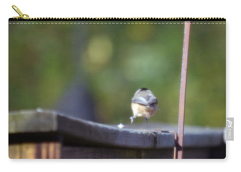 Birds Photographs Carry-all Pouch featuring the photograph Landing Strip by Barb Dalton