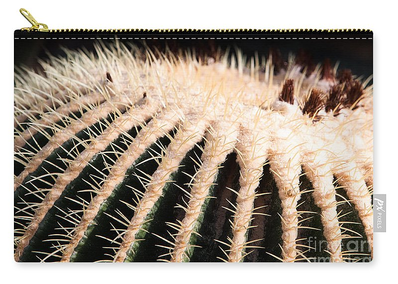Botanical Carry-all Pouch featuring the photograph Large Cactus Ball by John Wadleigh
