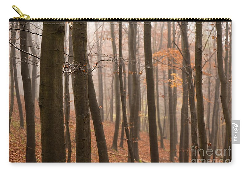 Atmospheric Carry-all Pouch featuring the photograph Late Autumn Beech by Anne Gilbert