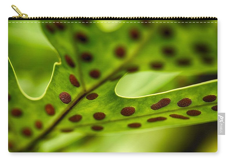 Floral Carry-all Pouch featuring the photograph Laua'e Fern by Jade Moon