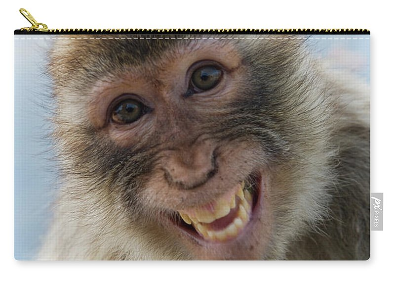 Alertness Carry-all Pouch featuring the photograph Laughing Gibraltar Ape Barbary Macaque by Holger Leue
