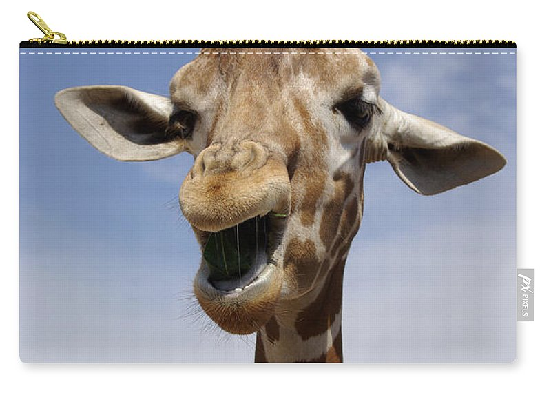 Laughing Giraffe Carry-all Pouch