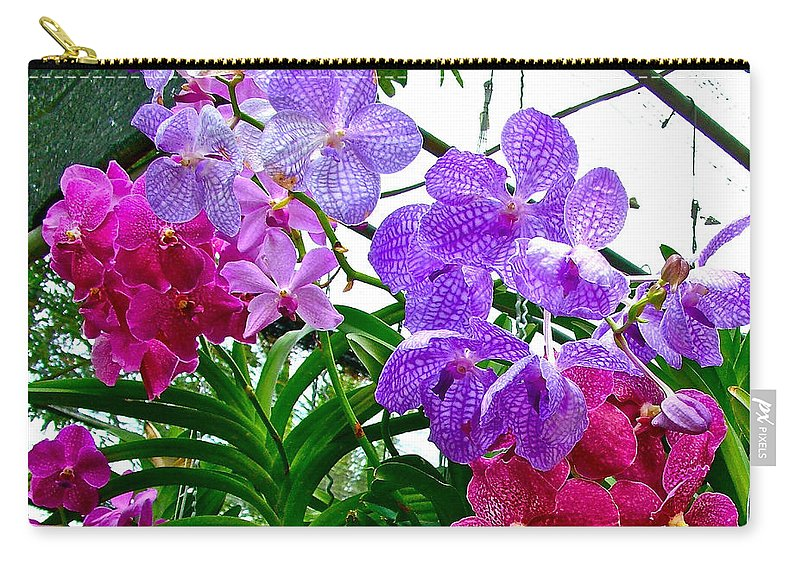 Lavender And Red Orchids At Maerim Orchid Farm In Chiang Mai Carry-all Pouch featuring the photograph Lavender And Red Orchids At Maerim Orchid Farm In Chiang Mai-tha by Ruth Hager