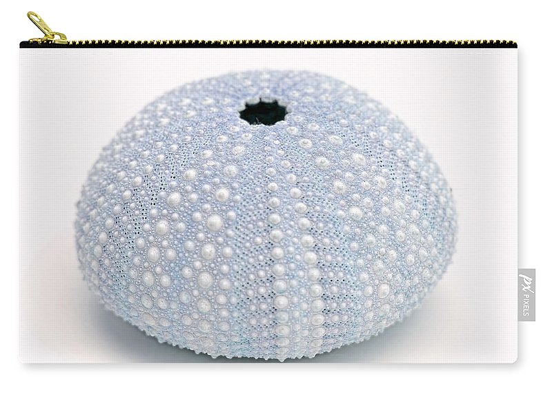 Sea Urchin Carry-all Pouch featuring the photograph Blue Sea Urchin White by Jennie Marie Schell
