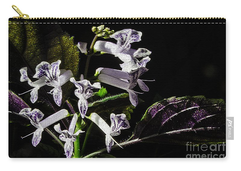 Plant Carry-all Pouch featuring the photograph Lavender by Donna Brown