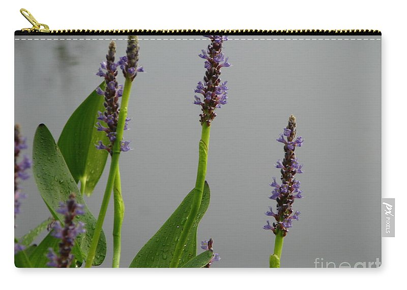 Lavender Carry-all Pouch featuring the photograph Lavender by Michael Krek