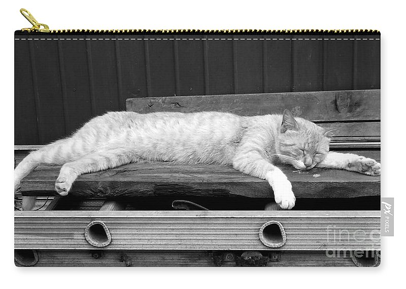 Lazy Carry-all Pouch featuring the photograph Lazy Cat by Andrea Anderegg