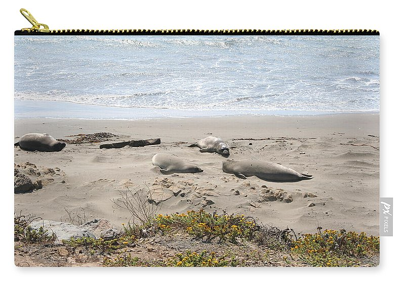 Beach Carry-all Pouch featuring the photograph Lazy Seals by Christiane Schulze Art And Photography