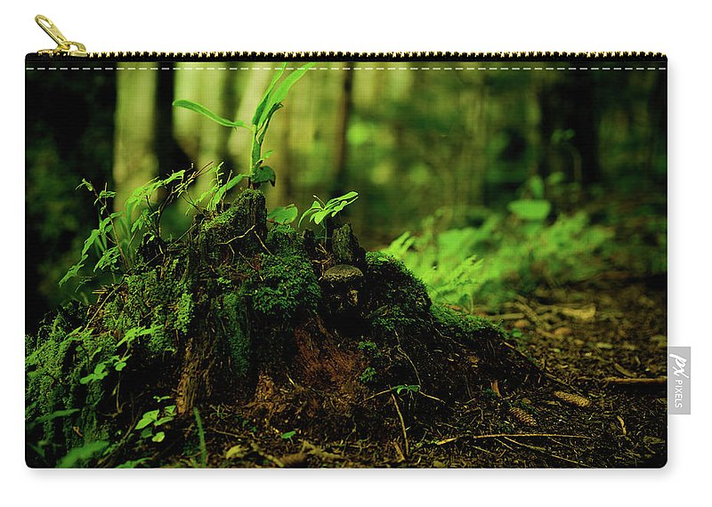 Hokkaido Carry-all Pouch featuring the photograph Leaf Bud by Plasticboystudio