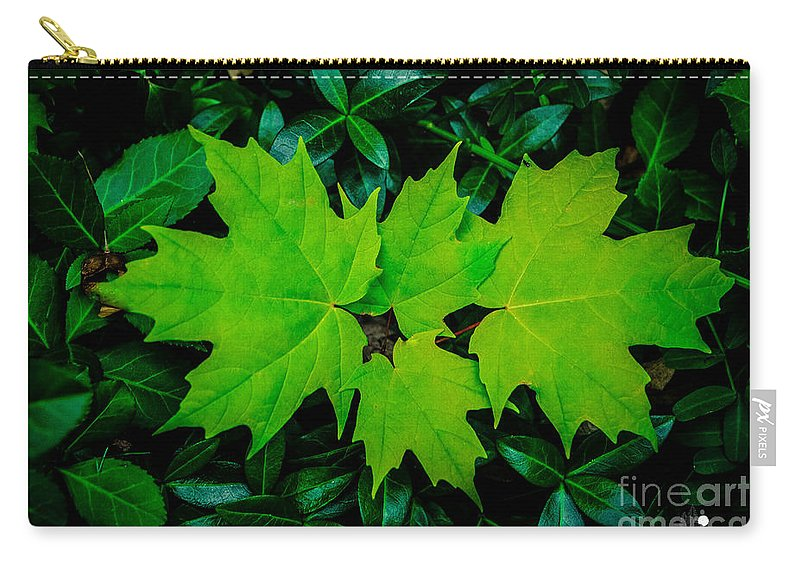 Eaton Rapids Carry-all Pouch featuring the photograph Leaf Overlay by Grace Grogan