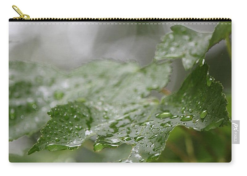 White Carry-all Pouch featuring the photograph Leafy Raindrops by Jennifer E Doll