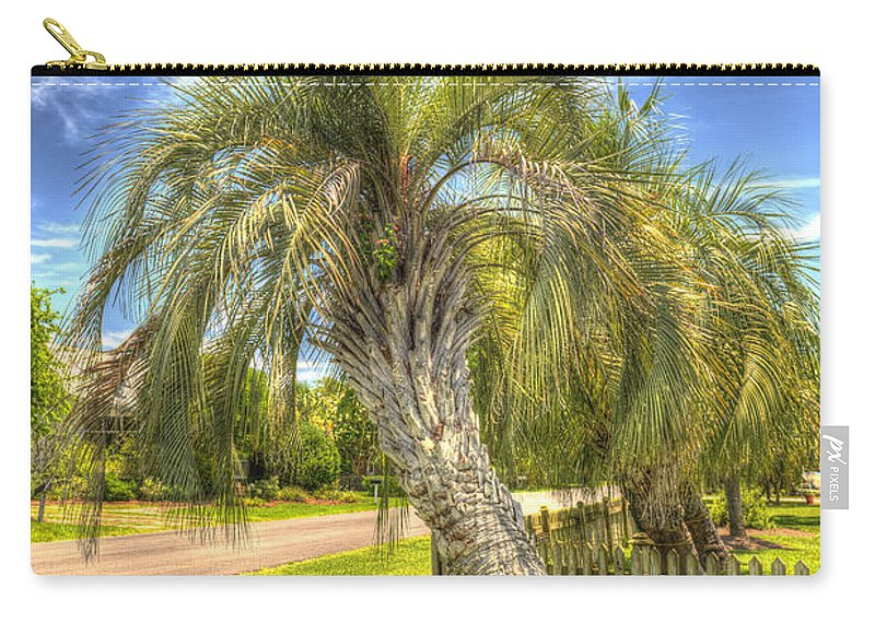 Palm Carry-all Pouch featuring the photograph Leaning Palm by Dale Powell