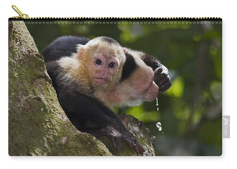 Wild Carry-all Pouch featuring the photograph Learning... by Nina Stavlund