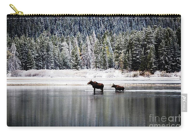 Moose Carry-all Pouch featuring the photograph Learning The Ropes by Deanna Cagle