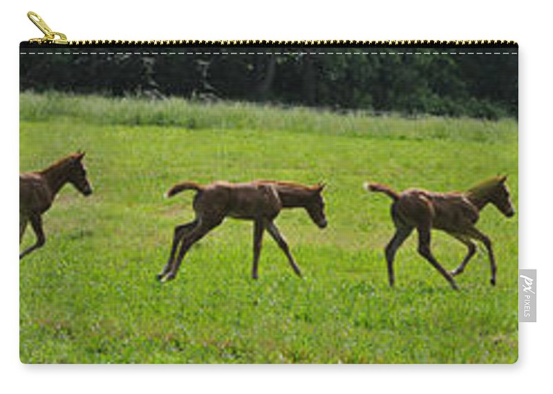 Baby Carry-all Pouch featuring the photograph Learning To Run by Bill Cannon