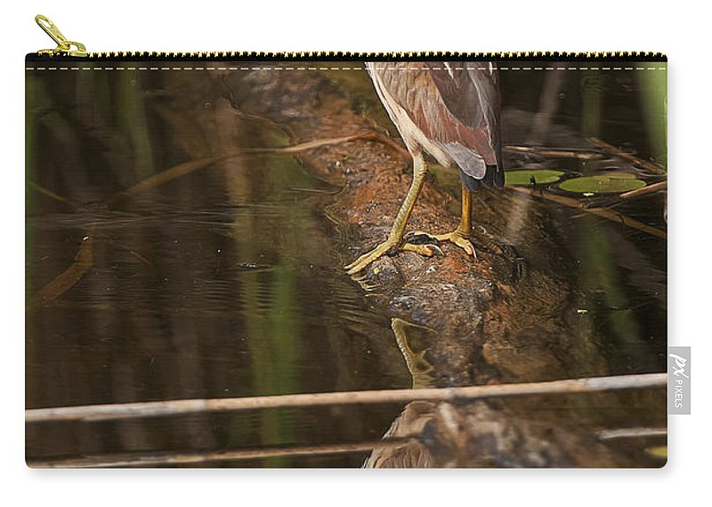 Least Bittern Carry-all Pouch featuring the photograph Least Bittern Pictures 17 by World Wildlife Photography