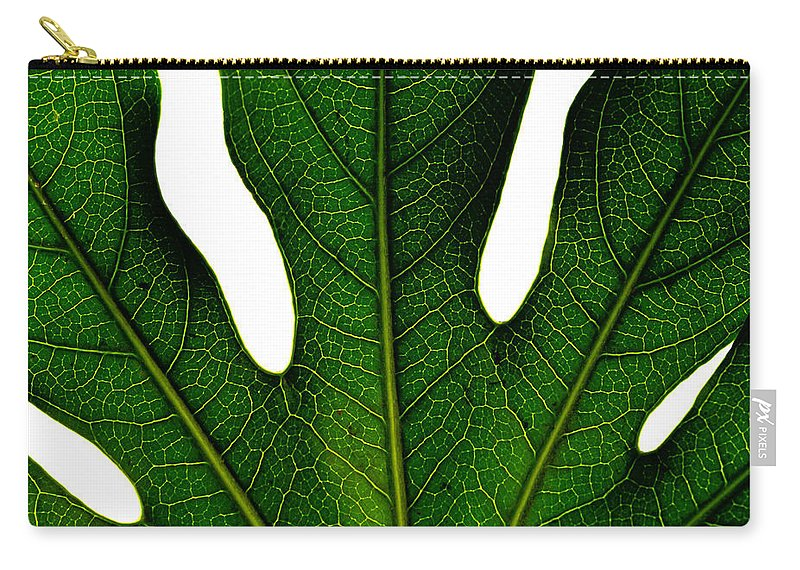 Botanic Carry-all Pouch featuring the photograph Leave by TouTouke A Y