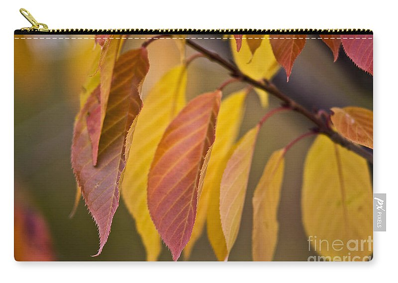 Heiko Carry-all Pouch featuring the photograph Leaves In Fall by Heiko Koehrer-Wagner