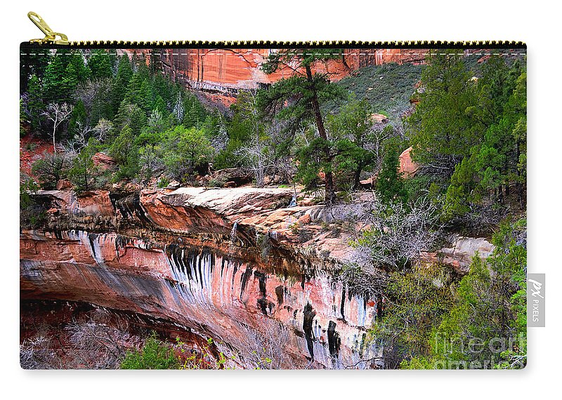 Waterfall Carry-all Pouch featuring the photograph Ledge At Emerald Pools In Zion National Park by Rincon Road Photography By Ben Petersen