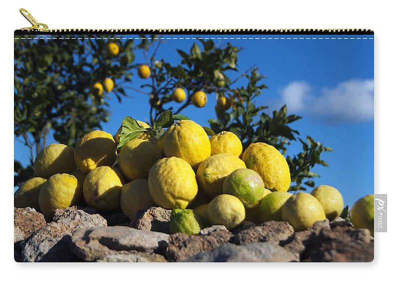Lemon Carry-all Pouch featuring the photograph Lemon by Focus Fotos