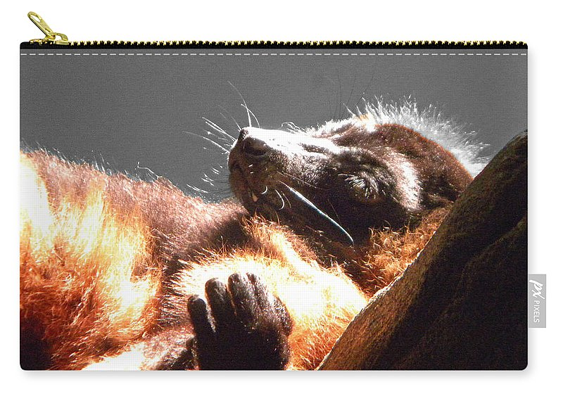 Lemur Carry-all Pouch featuring the photograph Lemur Lounging by Phillip W Strunk