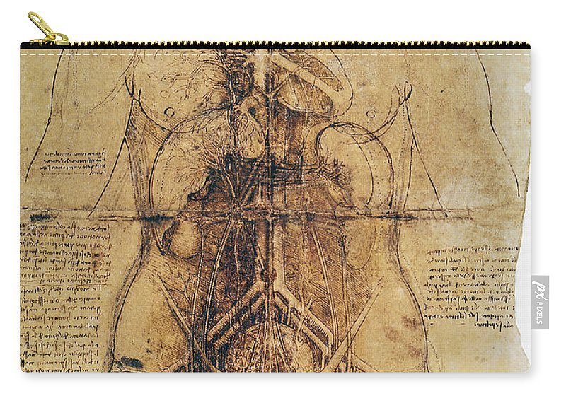 1510 Carry-all Pouch featuring the photograph Leonardo: Anatomy, C1510 by Granger