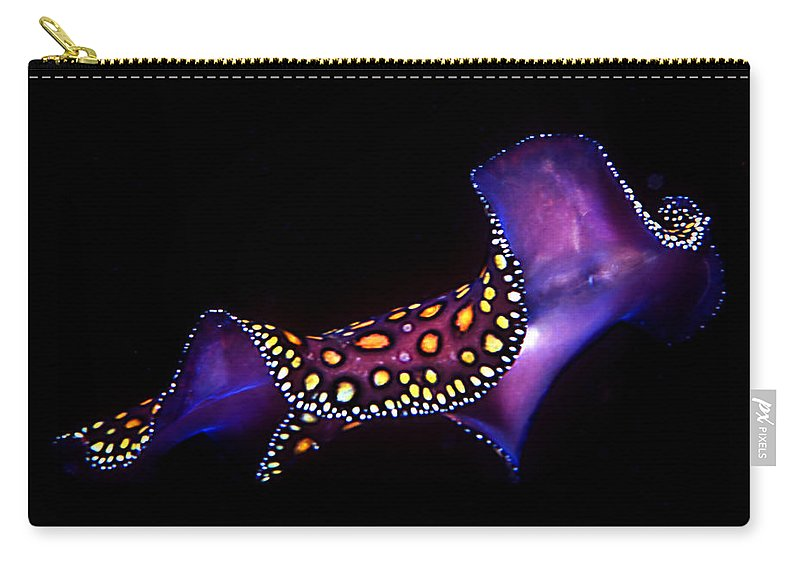 Underwater Carry-all Pouch featuring the photograph Leopard Flat Worm by Jean Noren