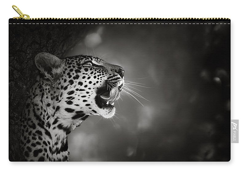 Leopard Carry-all Pouch featuring the photograph Leopard Portrait by Johan Swanepoel