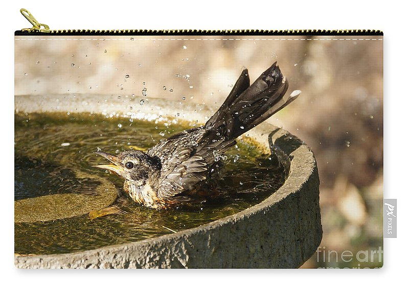 Robin Carry-all Pouch featuring the photograph Let The Water Fly by Lori Tordsen