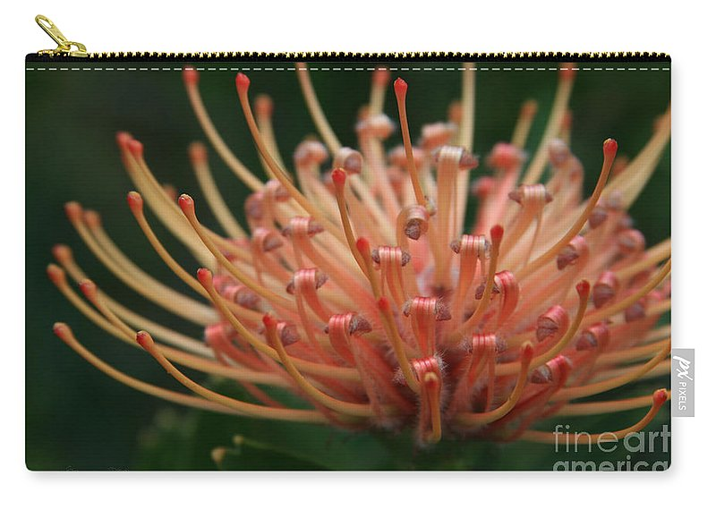 Aloha Carry-all Pouch featuring the photograph Leucospermum Pincushion Protea Tropical Sunburst Protea Flower by Sharon Mau