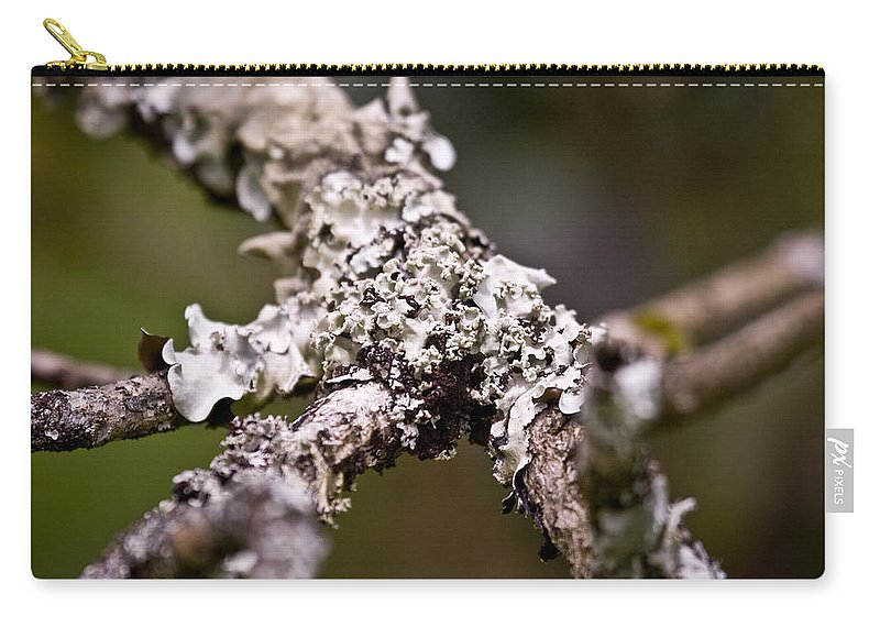 Lichen Carry-all Pouch featuring the photograph Lichen by Sandy Swanson