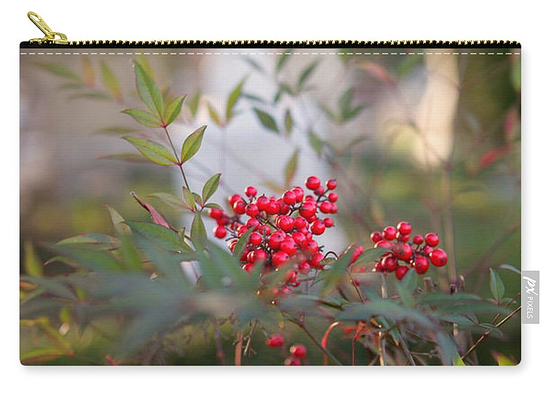 Cemetery Carry-all Pouch featuring the photograph Life And Death by Erika Weber