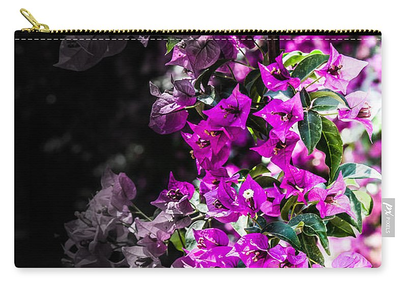 Purple Life Carry-all Pouch featuring the photograph Life And Death by Sotiris Filippou