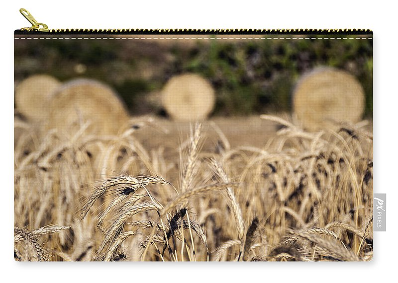 Harvest Carry-all Pouch featuring the photograph Life Cycle Of Wheat - Harvesting by Focus Fotos