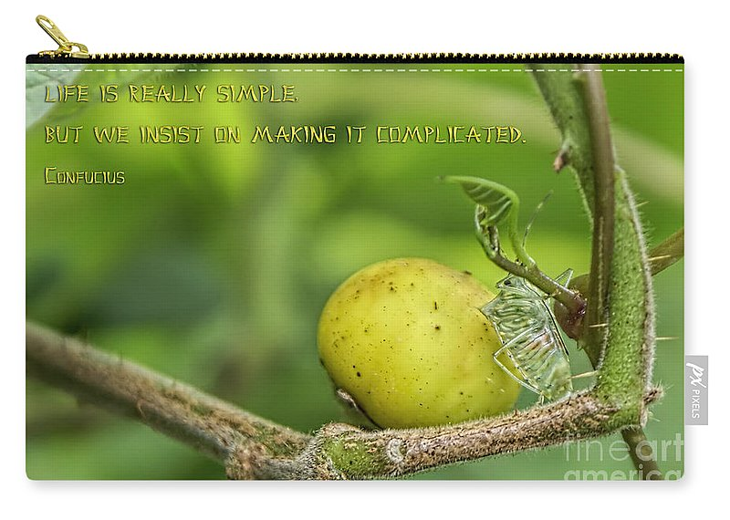 Life Quote Carry-all Pouch featuring the photograph Life Is Simple by Olga Hamilton