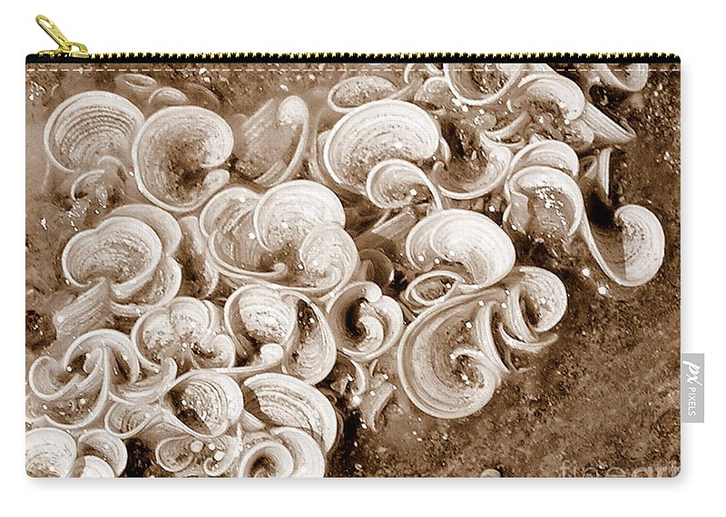 Sea Life Carry-all Pouch featuring the photograph Life On The Rocks In Sepia by Mary Deal