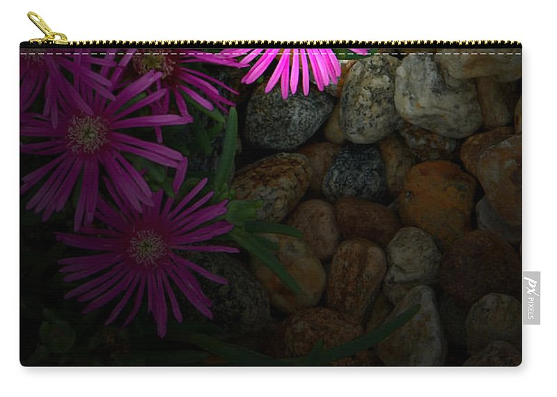 Ice Plant Carry-all Pouch featuring the photograph Light In The Rock Garden by Mike Nellums