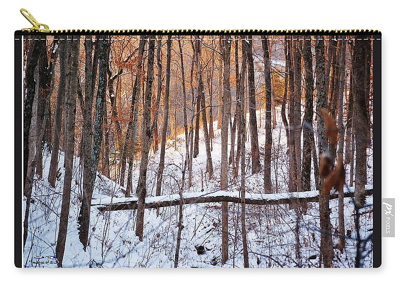 Winter Carry-all Pouch featuring the photograph Light In The Valley by Scott Polley