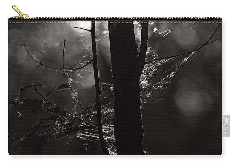 Morning Light Carry-all Pouch featuring the photograph Light Of The Morn by Joshua McCullough