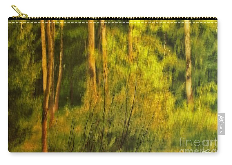 Photo Carry-all Pouch featuring the photograph Light Painting by Jutta Maria Pusl